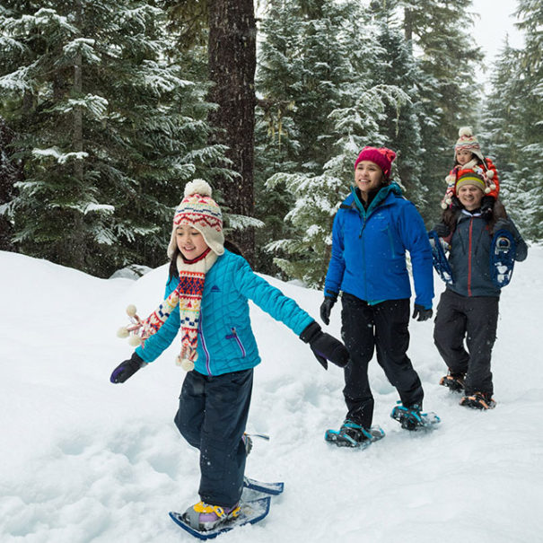Guided Snowshoe Tour